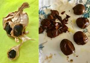 diffénce entre Ail Noir tradition et Ail Noir Culinaire